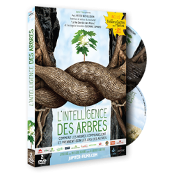 2 DVD L'Intelligence des Arbres