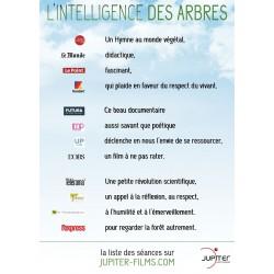 2 DVD  L'Intelligence des Arbres