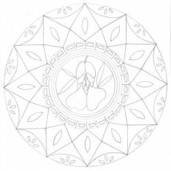 Fleurs de Bach et mandalas à colorier