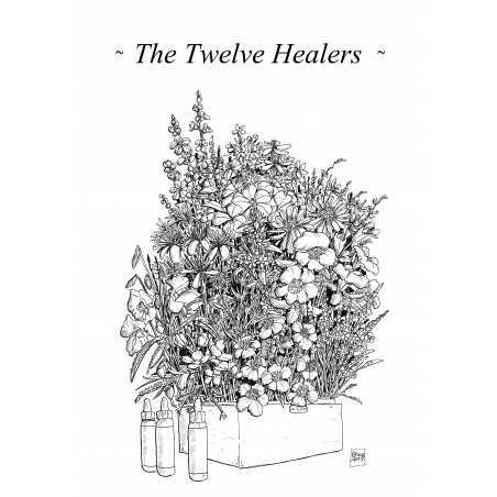 """CADEAU: Dessin à colorier:  """"The 12 healers"""""""