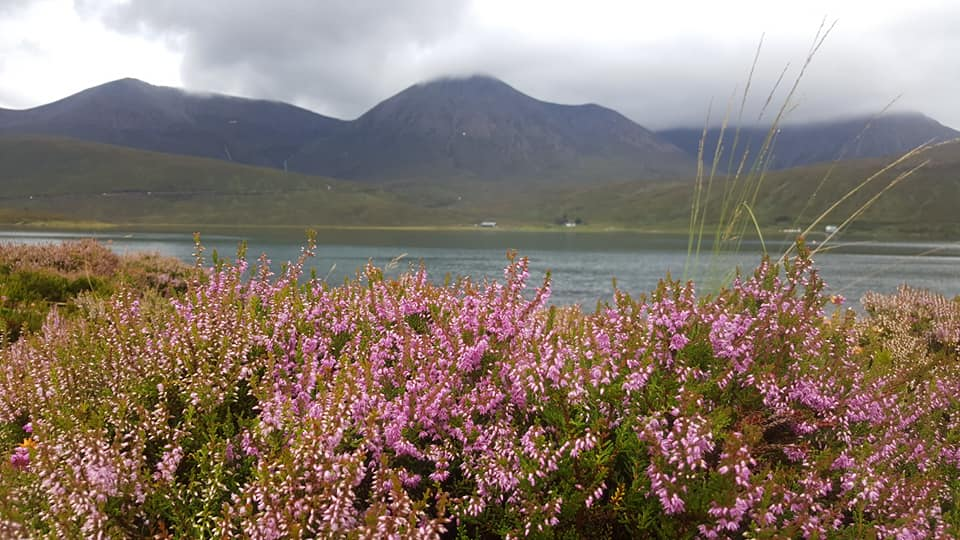 heather ile de skye